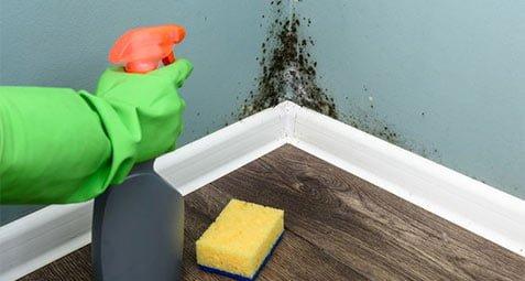 ترفند هایی برای تمیز کردن سقف و دیوار - دستمال جادویی پرسان